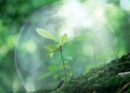 2019年亚太绿色低碳发展高峰论坛开幕
