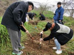 湖南农业大学100名志愿者为浏阳河添绿