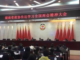 """省政协召开会议传达学习全国""""两会?#26412;?#31070;"""