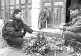 【清风时局】盼了60年的路在他努力下修通 怀化市委驻洪江市堙上村扶贫工作队队长石之光扶贫记