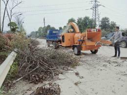 环保新利器!一分钟看一棵大树废枝如何变成可回收粉末