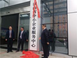 湖南省中小企业服务中心挂牌 83万中小企业有了新家
