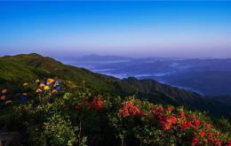"""""""五一""""小长假全省森林公园接待游客237.17万人次,同比增长22.6%"""