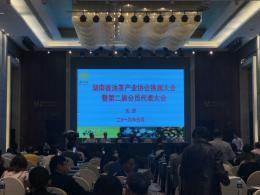 2018年湖南油茶产值达450亿元