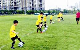 长沙中小学生今年暑假享受这些体育场所、项目免费开放,免费培训,政府买单!