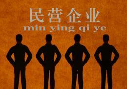 上半年湖南民營企業成對外投資主力軍