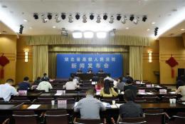 湖北省法院发布5起危害食药安全典型案例 一人被判无期