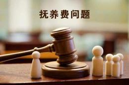 8歲殘疾男童起訴母親不付撫養費,法院當庭判決要承擔
