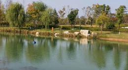 """周末陽光正好,長沙市民公園內享受""""日光浴"""""""