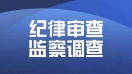 云南省財經委辦公室副主任王俊強接受審查調查